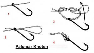 Knoten für Drop-Shot Angeln