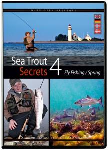 Geheimnisse der Meerforellen 4