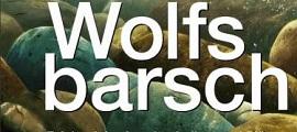 vom Mythos zum Hype: Wolfsbarschangeln
