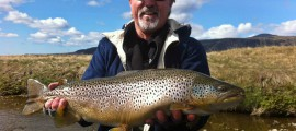 iceland and trouts