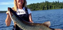 Musky Carrie Cartwright