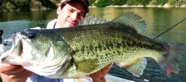 Bassfishing