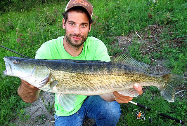 Schöner Fisch, leider hat der Fotograf da ein bißchen gepennt...