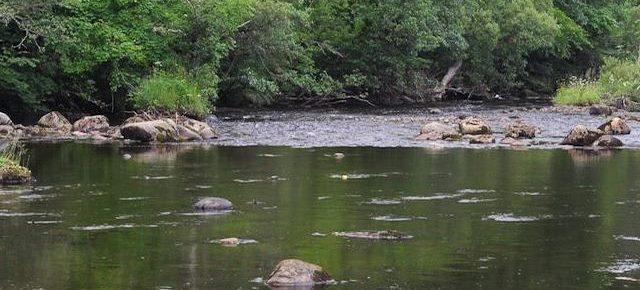 Angeln in Irland - Flüsse