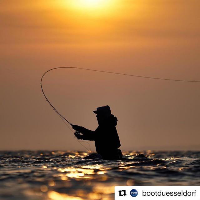 Casting mit kochenmitfreude dichtamfisch seatrout dk als baltic sunset fishinghellip