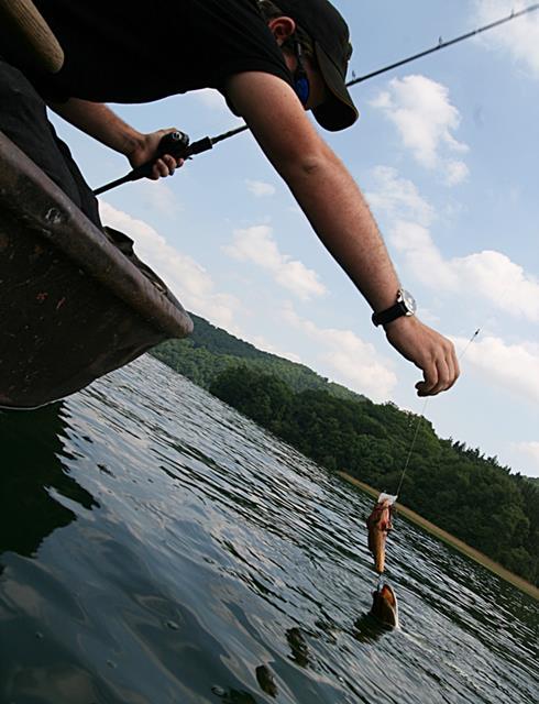 Hecht Landung Laacher See