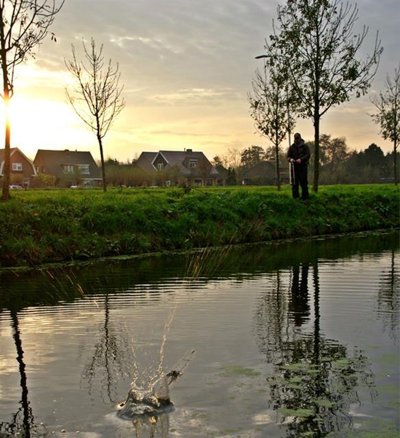 Hechtfischen in den Poldern in den Niederlanden