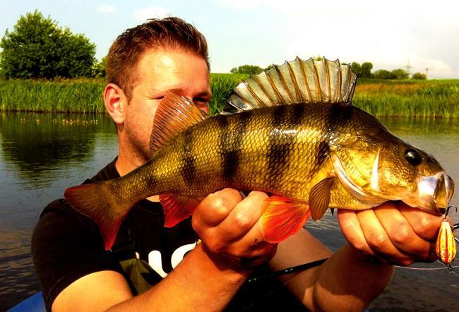 bester luftdruck zum angeln
