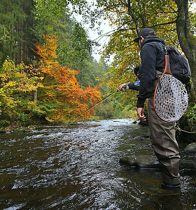 Biodiversität am Bach und Fluß