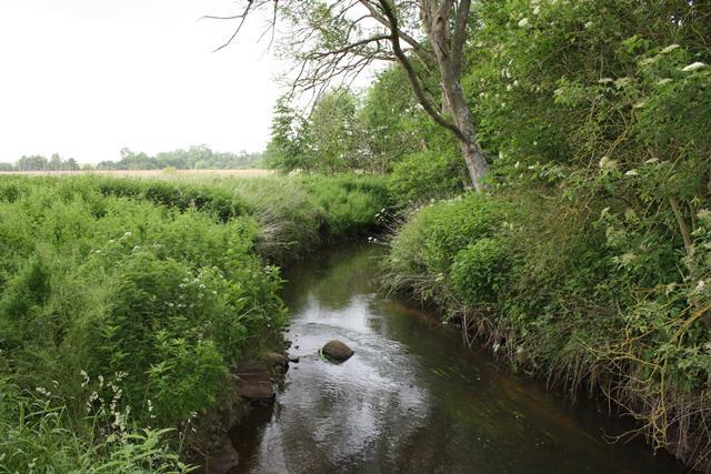 Waidbach naturnaher Fluß in MV