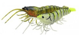 hybrid_shrimp_anzeige