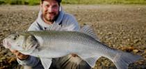 Doppeldrill beim Fischen