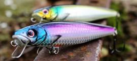 Fisch & Fang / Hybrida Zanderkönig