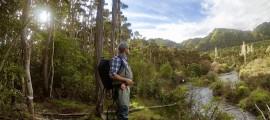 Forellenangeln in Neuseeland
